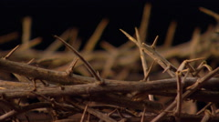 Close view of crown of thorns, rotating left - stock footage