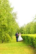 Bride and groom walking  in summer park outdoors Stock Photos