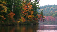 Placid lake water reflecting a forested shoreline in autumn colors Stock Footage