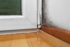 Moisture and mold -Problems in a house Stock Photos