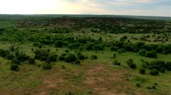Flying over brushy green rangeland cut by a muddy stream Stock Footage