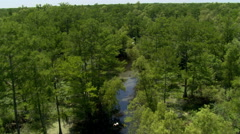 Flight along a meandering bayou with white birds leading the way - stock footage