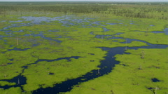Flight over bright green patches of water plants in a Louisiana bayou Stock Footage