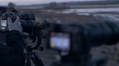 Close on Camera LCD Filming Waterfowl - stock footage