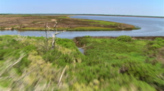 Over marshy grassland along the shore of placidly flowing water Stock Footage