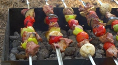 Stock Video Footage of Skewers with delicious kebabs or barbeque on brazier, cam moves to the right