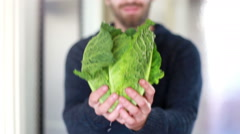 View of man hands holding bunch of kale - stock footage