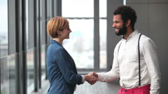 Profile of female creative director and male advertising executive shaking hands - stock footage