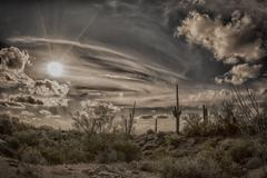 Antique image of the desert - stock photo