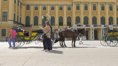 Walking by carriages in front of Schönbrunn Palace, Vienna Stock Footage