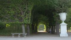 Woman walking on a tree tunnel at Schönbrunn Gardens, Vienna Stock Footage