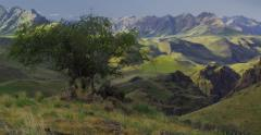 High Desert canyons, green from spring rains, Imnaha River OR - stock footage