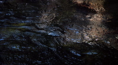 Clear water rippling in ultra-slow motion over stones and filling the frame - stock footage