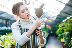 Pretty woman gardener taking care of ficus in flower pot - stock photo