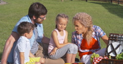 Affectionate Family on Picnic Stock Footage