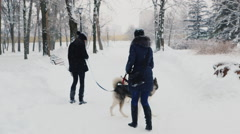 Two women playing with their dogs Huskies Stock Footage