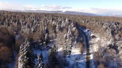 Aerial View Flight Above Winter Forest 18 Stock Footage