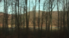Beech forest with no leaves seen on the window of a moving train 01 Stock Footage