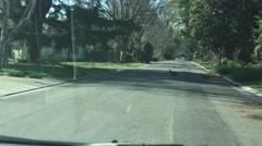 Wild turkeys crossing the street in residential Sacramento Stock Footage