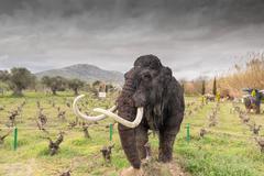 Mammoth portrait at the dinosaur park in Greece. Stock Photos