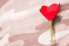 The red poppy is a symbol of Thailand Veterans Day Stock Photos