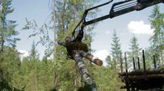 Mechanical Arm Feller Buncher loads tree trunks - stock footage