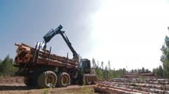 Feller Buncher unloads tree trunks - stock footage