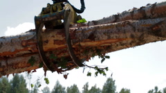 Mechanical Arm of Feller Buncher unload tree trunk - stock footage