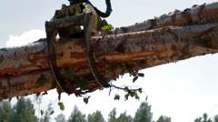 Mechanical Arm of Feller Buncher unload tree trunk Stock Footage