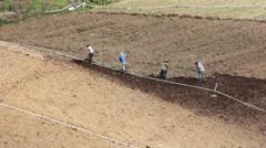 Farmers in Punta Cerro Panama Hoeing Field 1 - stock footage