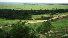 Car moving on road in savanna. Africa. Kenya. Masai Mara - stock footage