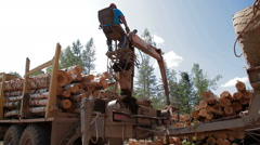 Logging Truck at Lumber Mill loads tree trunk Stock Footage