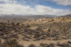 Dirt road in remote desert landscape Stock Photos