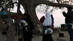 Families visiting the Tree of Life, during sunset. Bahrain. - stock footage