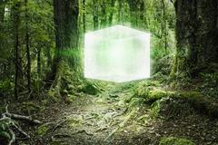 Glowing cube floating in forest Stock Photos