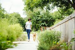 Caucasian woman walking dog in park Stock Photos