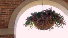 Flower Decoration - Hanging Flower Pot Stock Footage