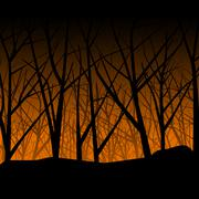 Spooky woodland - stock illustration