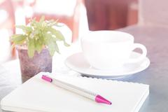 Notepad, pen and green plant on grey background - stock photo