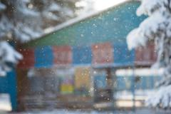 Winter snow falls an indistinct background the building blur Stock Photos