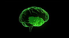 Human brain with regions lighting up and electrical impulses. Loopable. Green. - stock footage