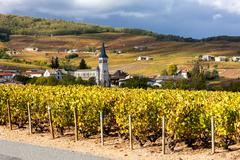 Chenas with vineyard, Beaujolais, Rhone-Alpes, France - stock photo