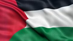 4K Palestine flag seamless loop Ultra-HD Stock Footage