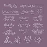 Beauty Industry Lettering and Curls. Vector Set - stock illustration
