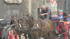 Coachman sitting in a horse carriage next to the Stephansdom, Vienna Stock Footage