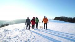 Active senior couples walking with sledges on snow Stock Footage