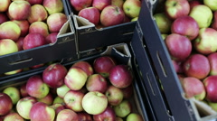 Boxes with apples, grocery store, transportation of fruit Stock Footage