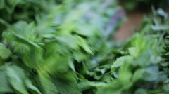 Mint fresh and aromatic. Vendors of food. Stock Footage