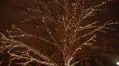 Christmas Illumination on a tree Stock Footage