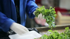 Pack of mint leaves into a container. Vendors of food. Stock Footage